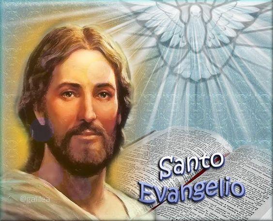 *Donne-nous notre Pain de ce jour (Vie) : Parole de DIEU *, *L'Évangile et le Livre du Ciel* - Page 5 4f94a85827fb3c281adebf383c13f014