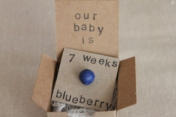 Set of 6, 7 week Pregnancy Announcements, How Big Is My Baby, Gender Reveals, Baby Size by ThePartyPosse on Etsy https://www.etsy.com/listing/166114053/set-of-6-7-week-pregnancy-announcements