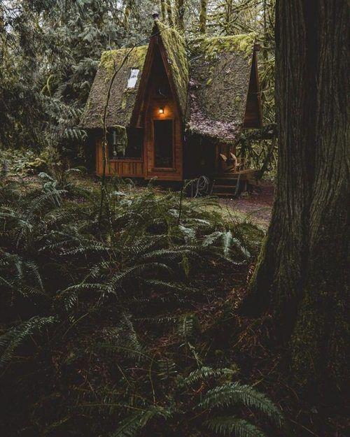 Cabin in the woods -   Pacific Northwest |  Sam Poole Jones... | #adventure #travel #wanderlust #nature #photography
