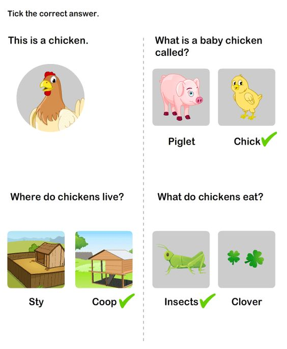 Animals and Their Homes Worksheet – Animals and Their Babies Worksheets for Kindergarten