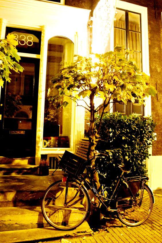 Bike ride @ Amsterdam, 2014.