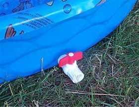Best Ideas About Damn Ducks Ladybug 39 S Ducks And Ducks Guineas On Pinterest Gardens The