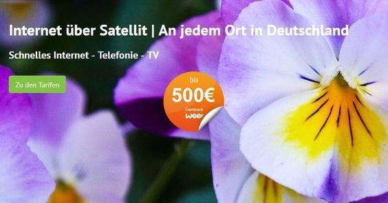Tiger Speed, Telefonie, Internet, Satellite, Cashback, Rabatt, Bonus, Gutschein, weeconomy, wee für YubyYu