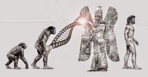 Annunaki genetic codes to make modern humans