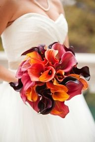 Multi-colored mini-calla lilies make for a stunning fall bouquet idea! Mini-callas are available year-round in a wide variety of different colors from GrowersBox.com.