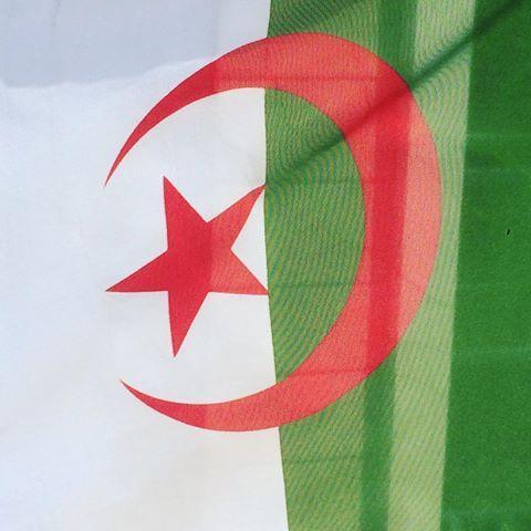 علم بلادي يرفرف بدبي نحييكم من فرح عبايا جزائرية وافتخر بشوت نسائيه السعودية قطر البحرين الجزائر Diy Shoe Rack Diy Shoes Country Flags