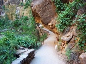 A Pit Stop a Day (Day 18): Zion National Park's The Narrows - Pitstops for Kids