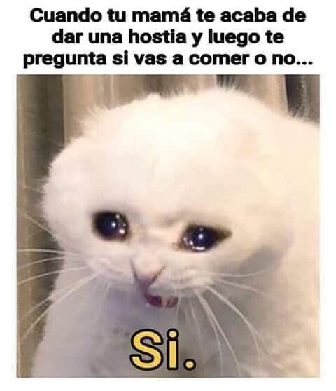 Memes Random De La Semana Cuando Tu Mama Te Da Una Hostia Memes Memesespanol Memesgraciosos Memesenespano Funny Spanish Memes Pinterest Memes Funny Memes