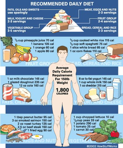 Calorie Chart Food Pyramid And Charts On Pinterest