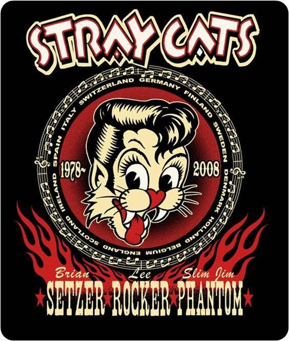 Fishnet Stocking Stray Cat
