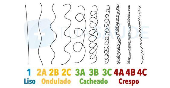 Tipos de Curvatura dos Cachos