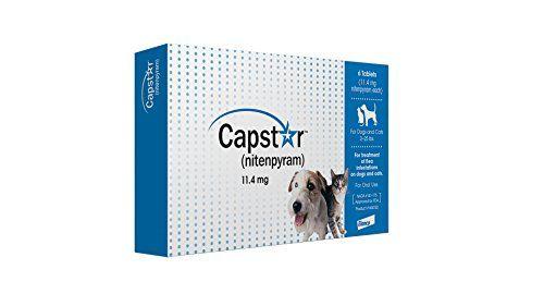 Capstar Flea Tablets For Dogs And Cats 6 Count 2 25 Lbs Blue Novartis Flea Treatment Dog Flea Treatment Flea Control