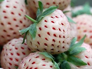 The pineberry-looks like a strawberry, is white with red seeds but smells and tastes like a pineapple.