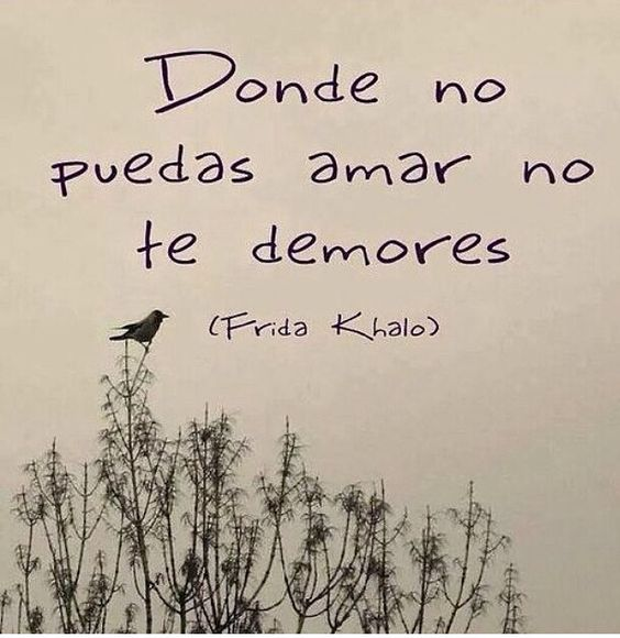 Especial Frida Khalo #Frases