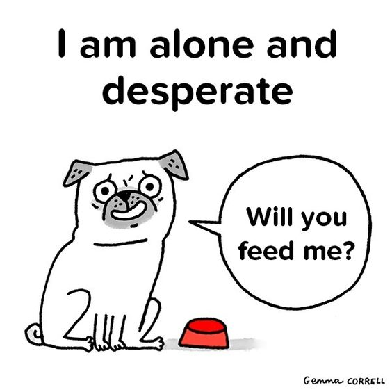 Check out my pug comic!