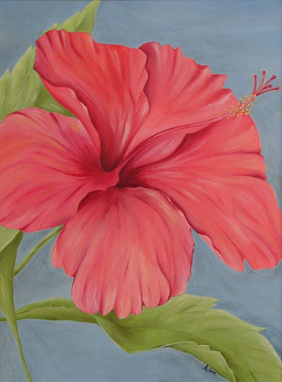 oil on canvas - An Azalia from a photograph I took while vacationing in the Bahamas.