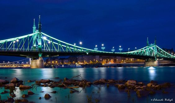 Liberty Bridge - the only thing I saw in Budapest