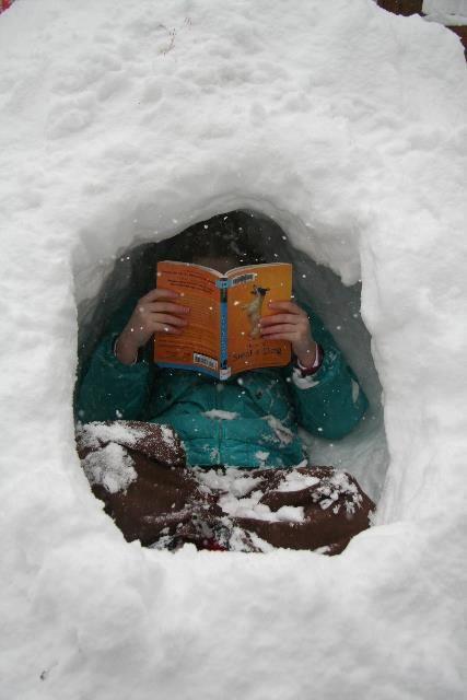 snow-reading