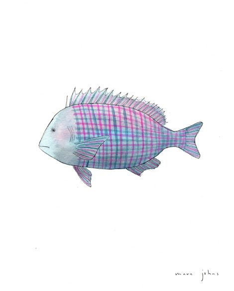 fish are better when they're plaid.    @Kyley Roos Rumohr, it's just true!