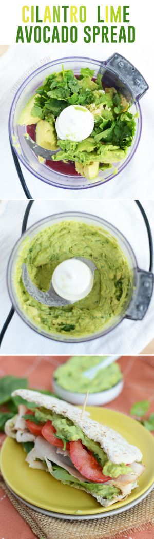 Fresh and healthy cilantro avocado spread from fit foodie finds - plus 17 more avocado #recipes in this roundup! avocados are high in protein and healthy fats as well as fiber. #FitFluential