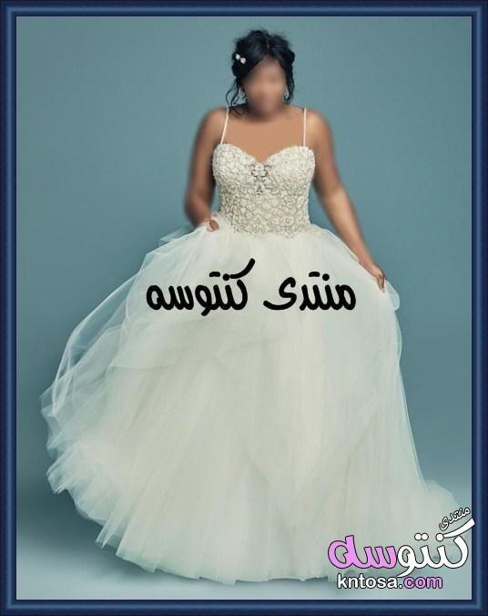 فساتين زفاف للبدينات جدا2020 موديلات فساتين زفاف مقاسات كبيرة فساتين اعراس ابيض للسمينات روعه Kntosa Com 17 19 155 Formal Dresses Long Dresses Formal Dresses