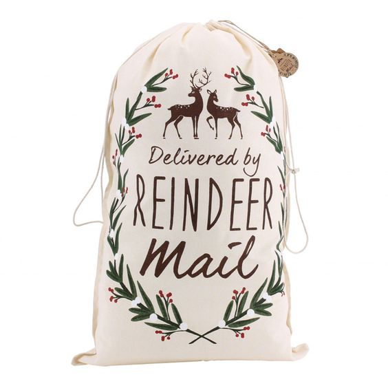 Awesome reindeer mail delivery sack- so cute for christmas