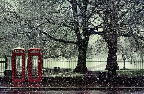 Ah,telephone booths and two trees...like the juxtaposition in this composition !