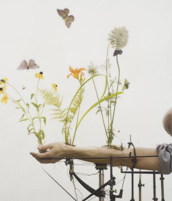les fleurs qui poussent du bras