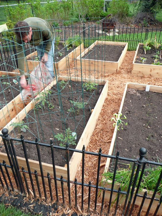 Garden boxes vegetable garden and vegetables on pinterest for Diy vegetable garden