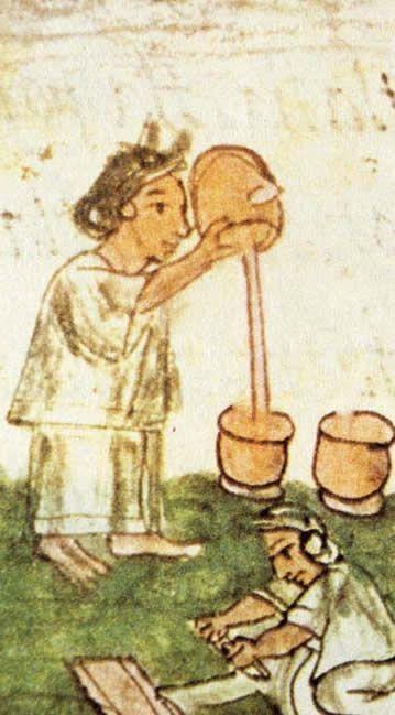 MAYALAND - TIERRA MAYA: EL CACAO Y EL CHOCOLATE