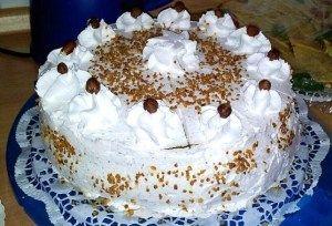 Schoko-Nuss Torte ... mmmh.. Steffi hat das Glück, solch tolle veganen Torten bestellen zu können