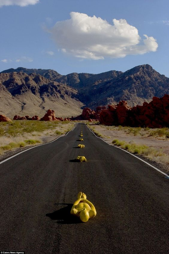 Stay behind the yellow line: This stunning photograph has been created using male and female models as the yellow lines in Nevada