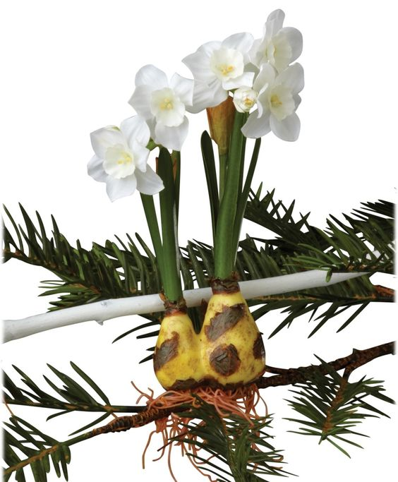Winter Sage Holiday Paper Bulb Tie-On Ornament (Set of 12)