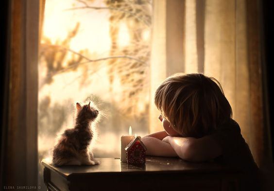 Kitten and child gazing out window with candle. #heartwarming #kitten #quiet