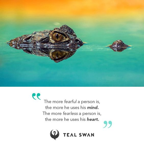 2,180 Likes, 49 Comments - Teal Swan (@tealspiritualcatalyst) on Instagram
