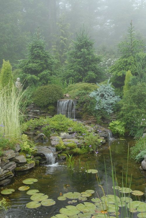 Here is a great pond and waterfall surrounded by a lush and full large garden. These plants make this space feel wild and natural. This kind of garden is the best kind of garden if you are looking to reconnect with the great outdoors in your own backyard.: