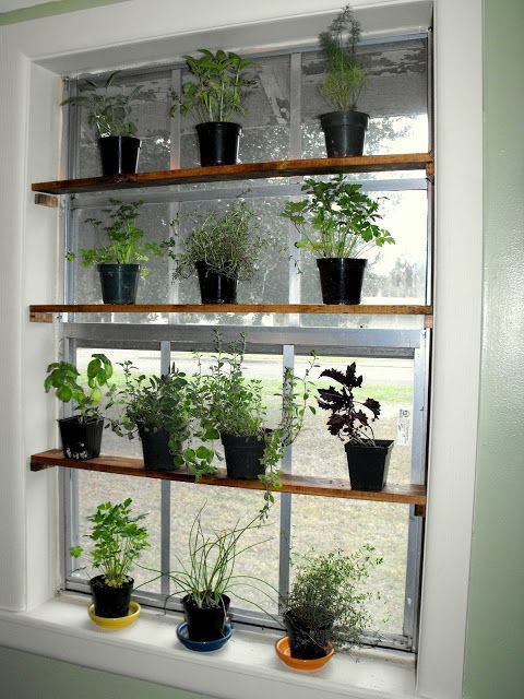 Kitchen Garden Window Diy Planters Indoor Windowsill Garden Window Shelf For Plants Indoor W In 2020 Kitchen Garden Window Indoor Window Garden Diy Planters Indoor
