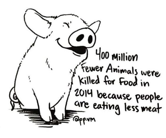 Paper on vegan/vegetarianism?