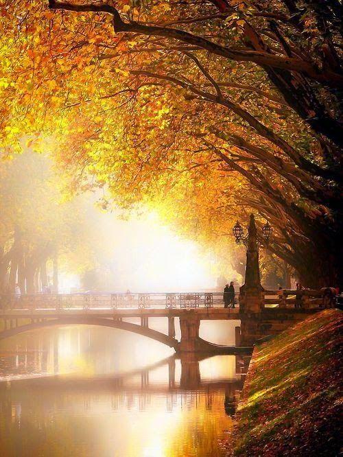 ภาพสวย ว ว ธรรมชาต ดอกไม สวยมาก Live Autumn Scenes Scenery Beautiful Nature