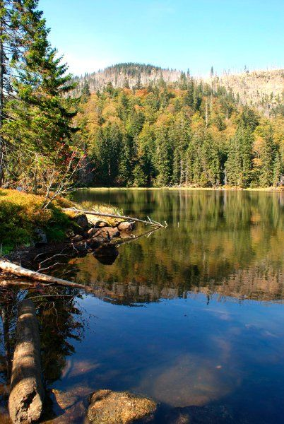 Der Rachelsee im Nationalpark Bayerischer Wald