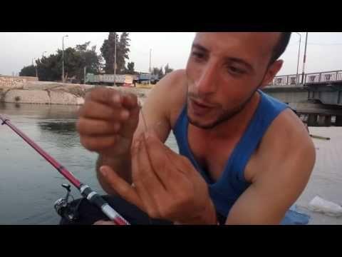 Youtube Youtube Fish Thumbs Up