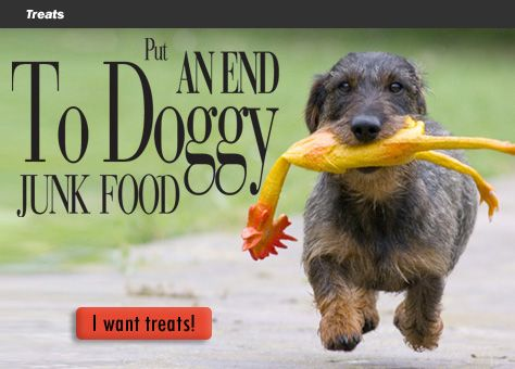 Holistic, gluten free dog food and cat food delivered fresh to your door! NourishedPet.com #glutenfree, #grain free
