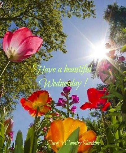 Have a beautiful Wednesday!: