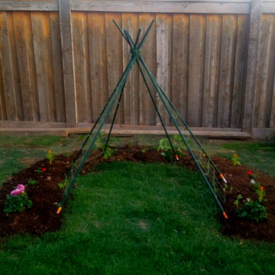 outdoor play teepee - will be so beautiful when the love-in-a-puff vines grow in!