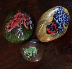 Handpainted on River rocks Tree frog Rainbow by PaintRiver on Etsy