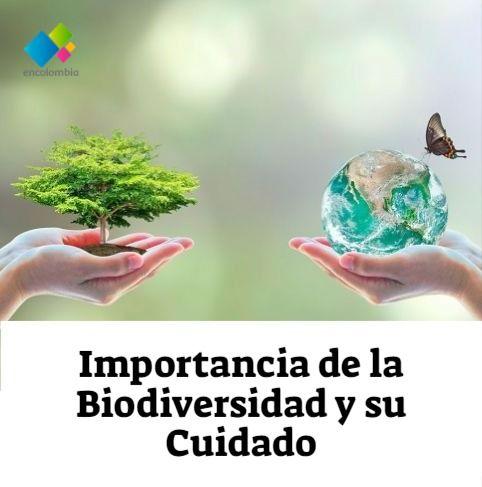 Importancia De La Biodiversidad Y Su Cuidado La Biodiversidad Conservacion De La Biodiversidad Normas Y Leyes