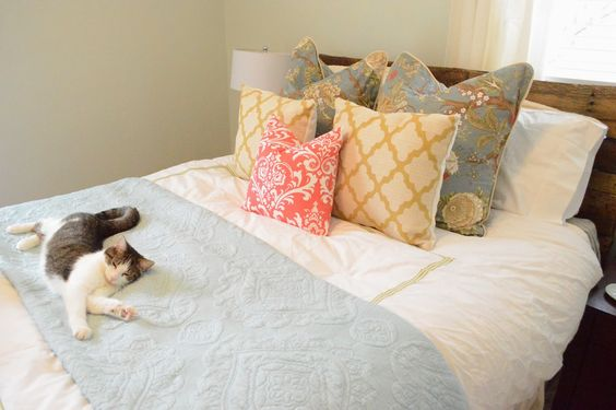 Love the colors for a guest room. Bonus kitty. Room Refresh on a Budget: Our Guest Room
