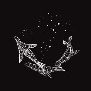 Coldplay – Midnight acapella