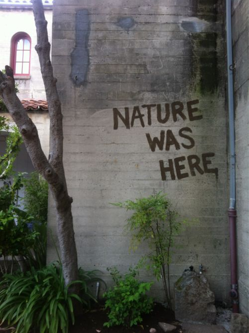 Nature was here.