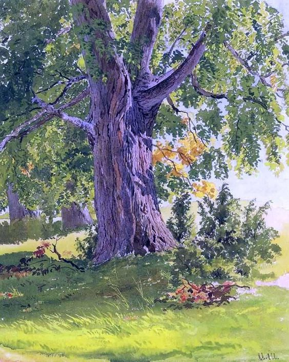 Sunny Oak by Ivan Ivanovich Shishkin - Hand Painted Oil Painting #artpainting